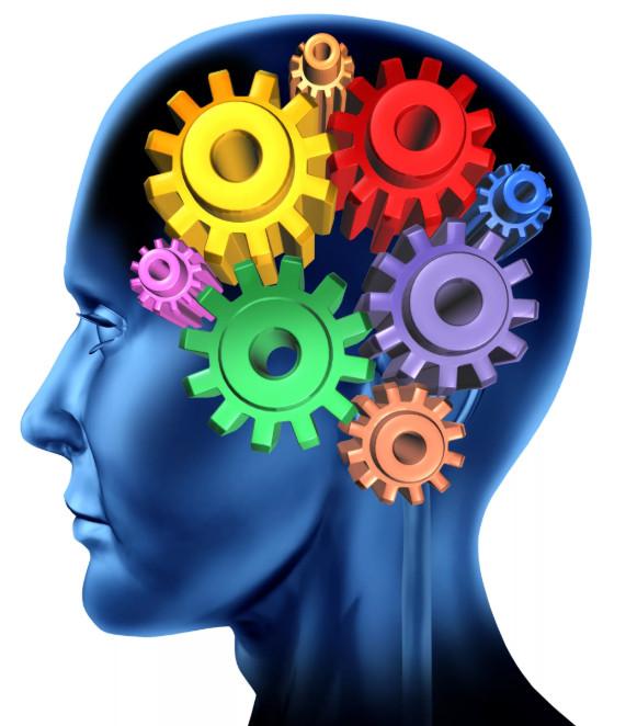 умственная жвачка для мозга